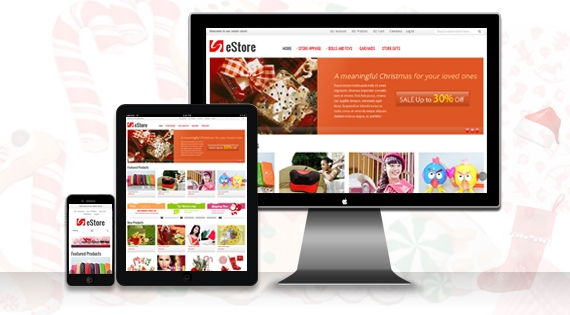 SM eStore - Responsive Theme for Magento